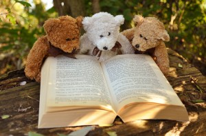 Bears reading Sue's blog posts
