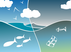 Diagram of an ecosystem