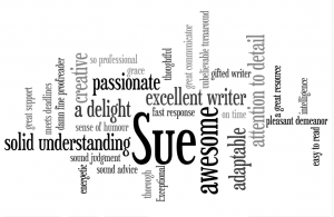 Sue's strengths as a writer