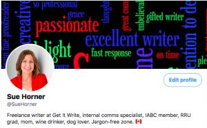 Sue's Twitter bio