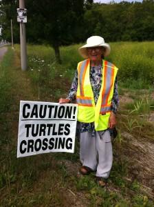 Turtle watching helps reduce road kill