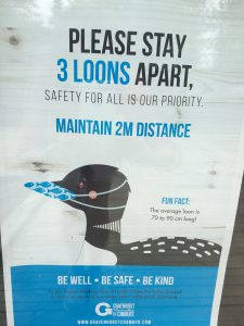 3 loons = 2 metres